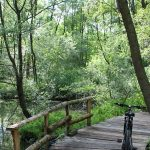 candia-canavese-parco-naturale-sentiero