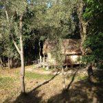 palafitta_montaltodora_lago pistono_web